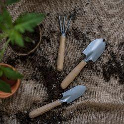 Pinterest-Saison-April-planen-Garten